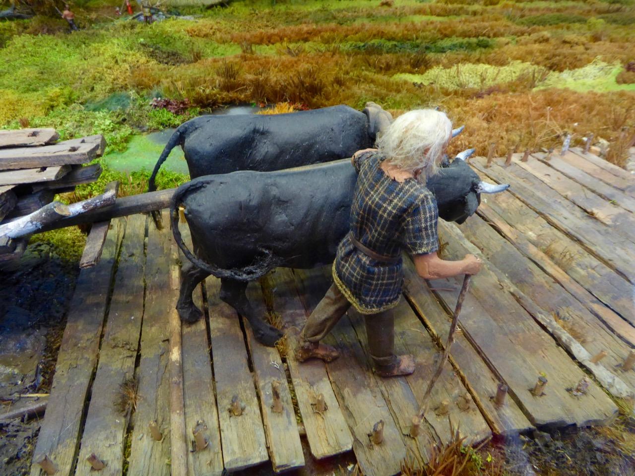 Guiding the oxen