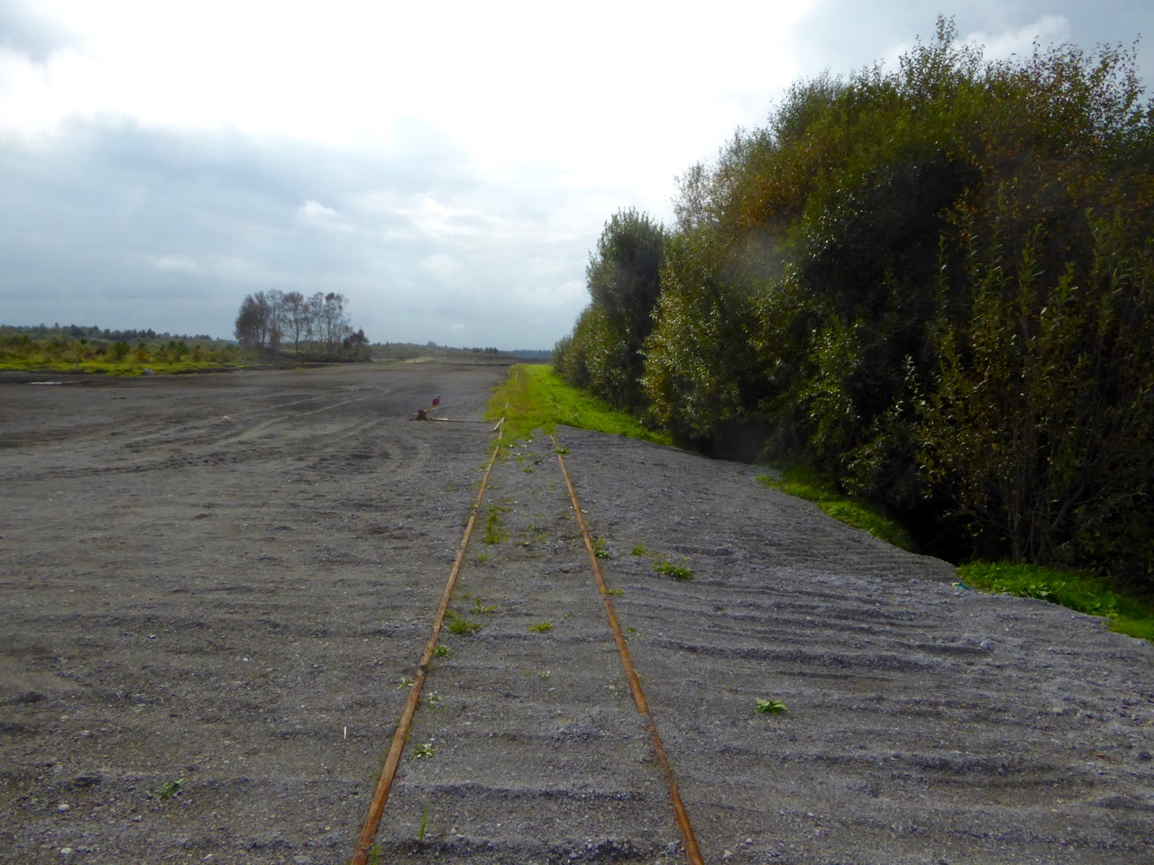 Modern Bog Trackway