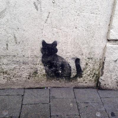 cat kilkenny