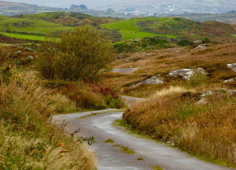 Road through Cappaghglass