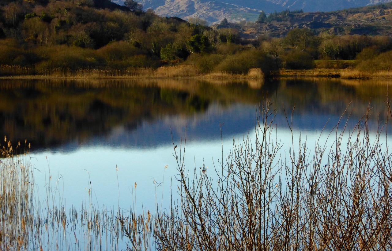 River Lee near Ballingeary 2