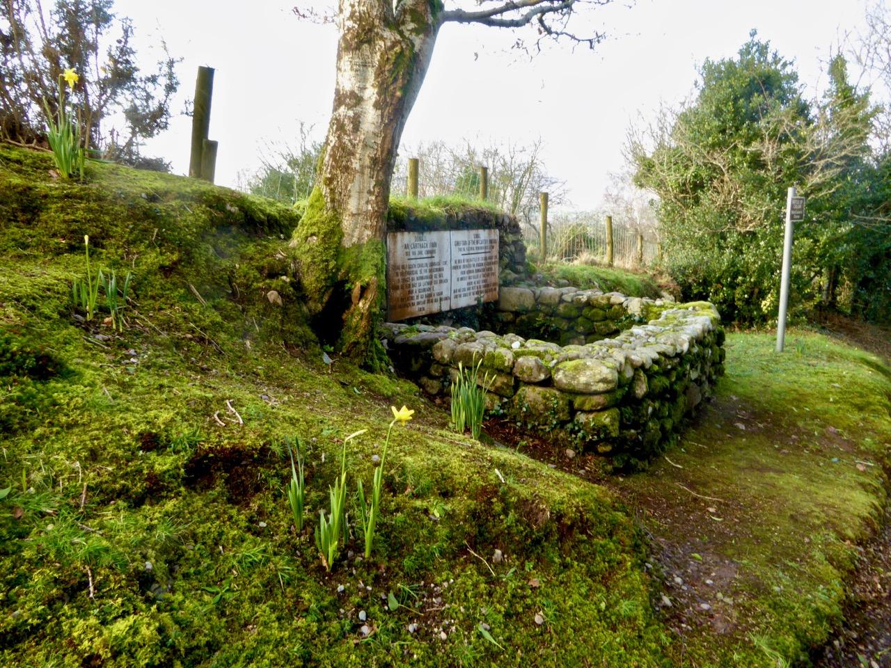 Macaura's Grave