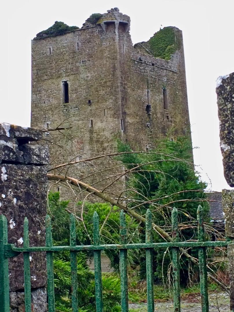 Twomileborris Castle