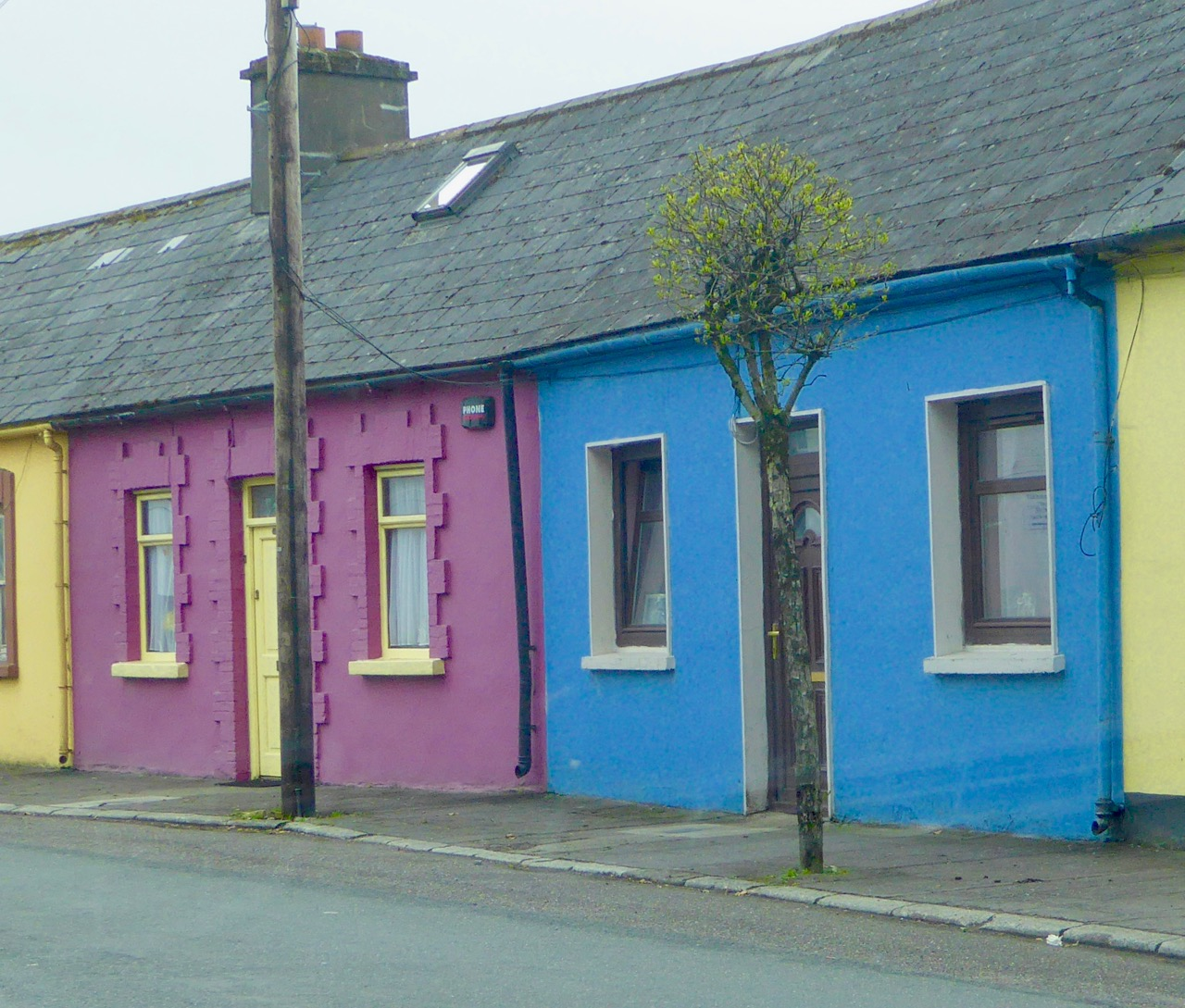 colourful in Millstreet