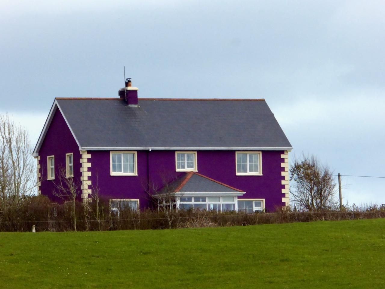 Purple house, colourful