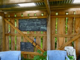 Community Orchard shelter