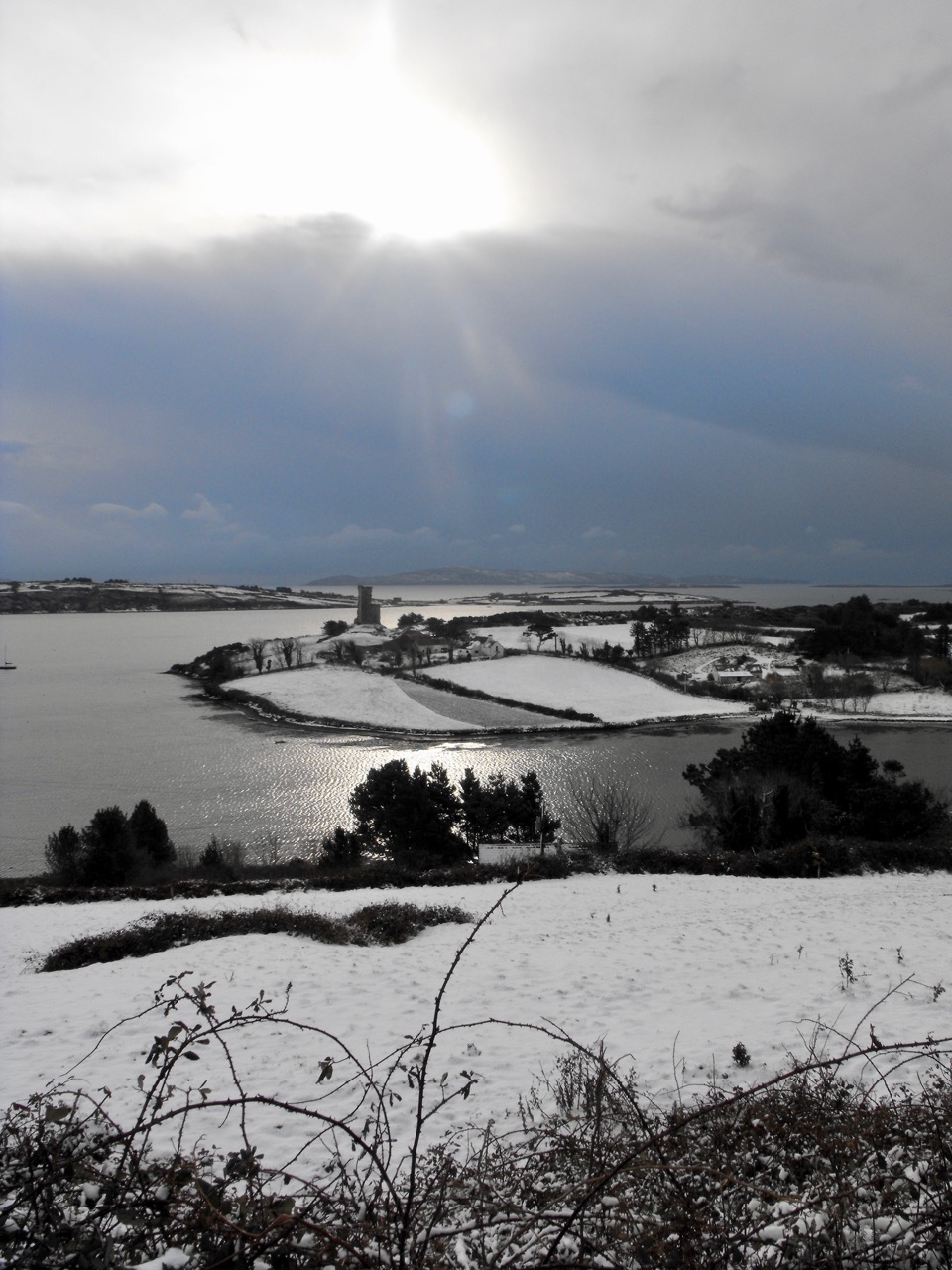 Cove in the snow 2010