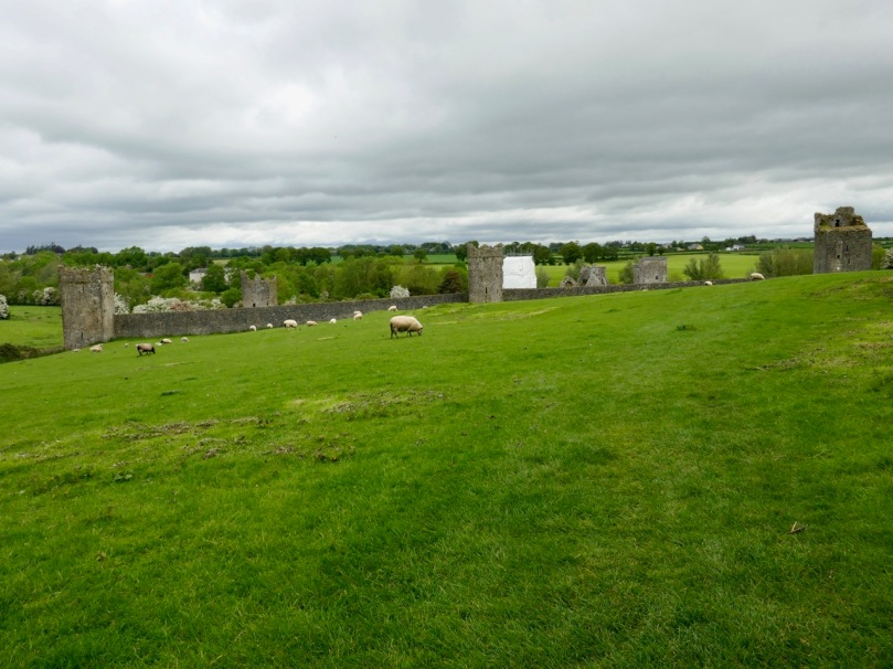 The Best Places to Eat in Navan Meath   Dining   Ardboyne Hotel