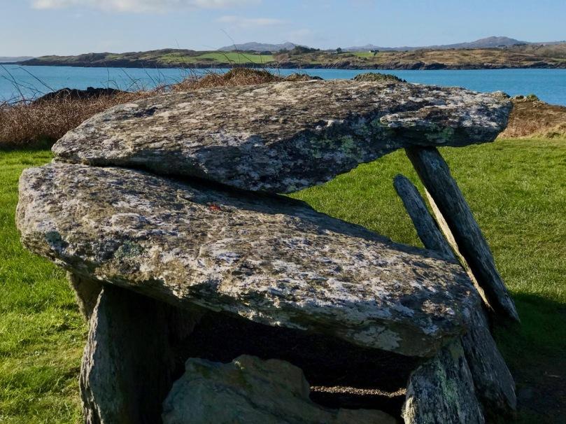 Cork Builders Providers: Home