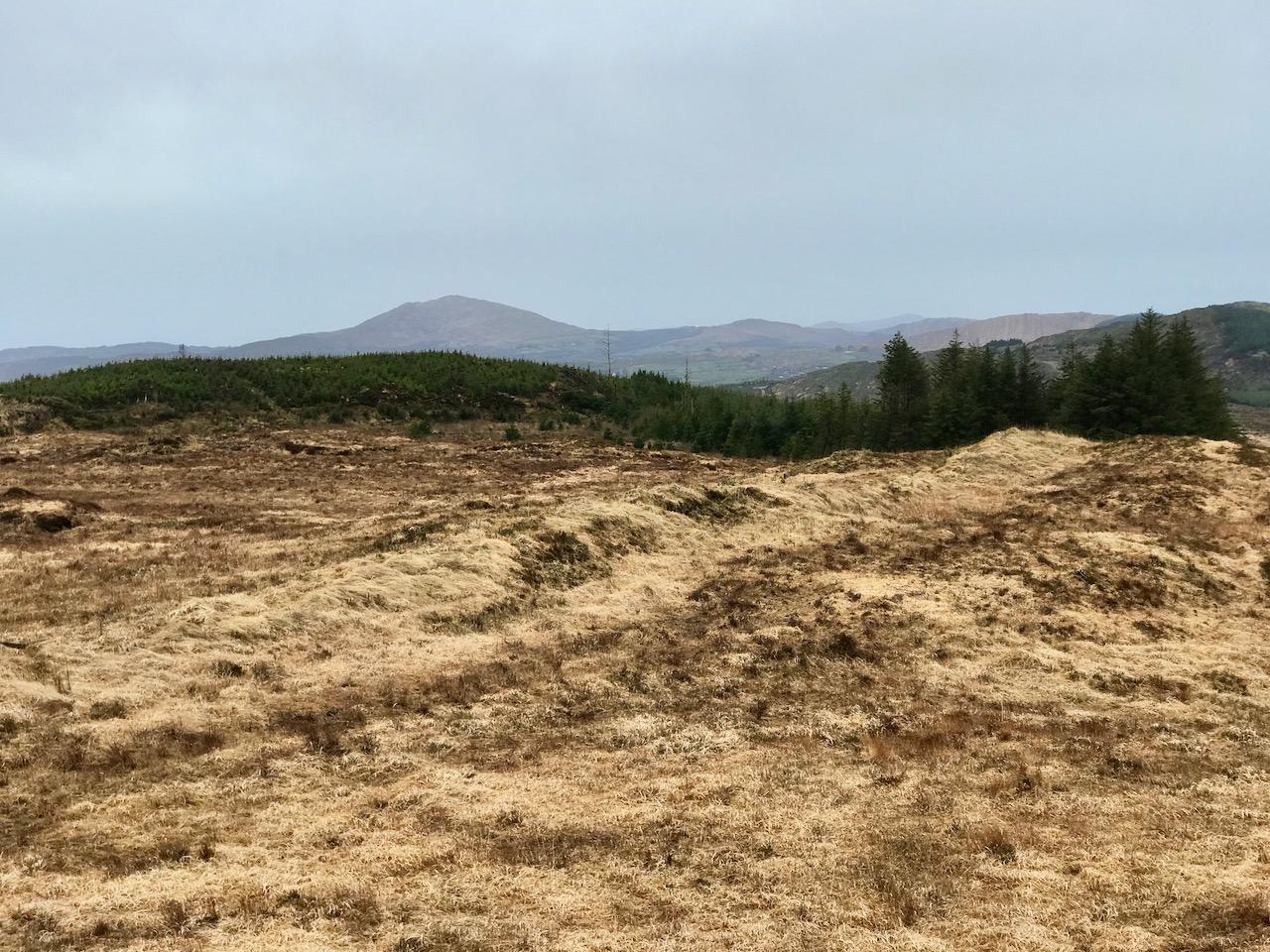 The Willows Development, Dunshaughlin, Co. Meath - Hooke